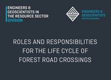 Professional Roles and Responsibilities for the Life Cycle of Forest Road Crossings