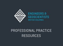 Professional Practice Resources