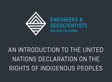 An Introduction to the United Nations Declaration on the Rights of Indigenous Peoples: Making the Declaration Law in Canada